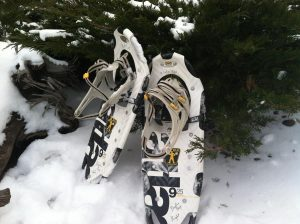 Snowshoes in the Snow