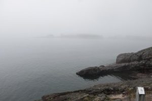 Mist on the North Shore