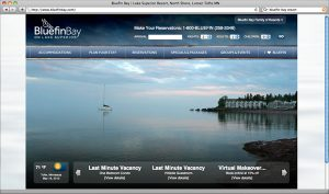 2010 Bluefin Bay Website Image