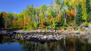Fall Colors at Surfside on Lake Superior