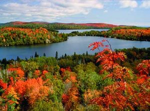 Bluefin Bay with Fall Colors