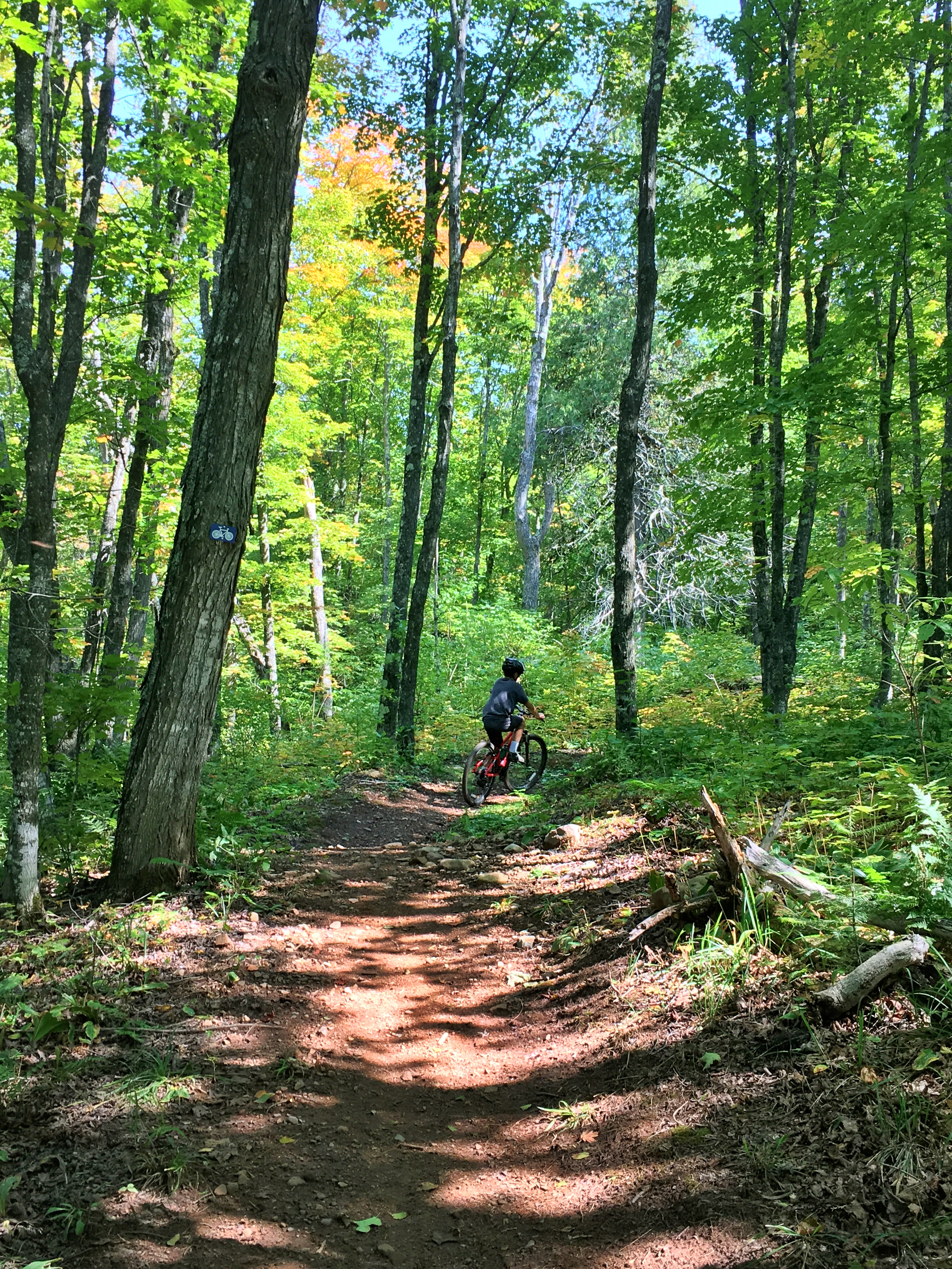 Mountain Bike Through The Fall Colors: An Instagram-Worthy Adventure ...