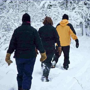 Snowshoeing Hikes