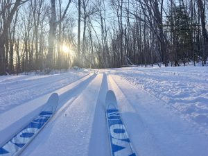 Cross-Country Skis on Trail