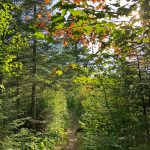 Leveaux Mountain Hike September 2018