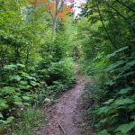 Hiking Trails at Lutsen Mountains