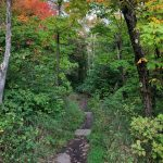 Oberg Mountain Trail in Fall