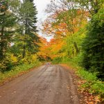 Honeymoon Trail Fall Color Drive
