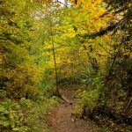 Lookout Mountain Trail in October