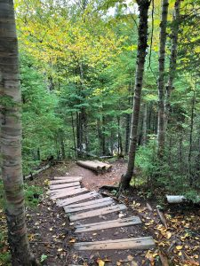 Cascade River state Park Stairs in October