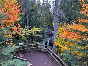 October in Cascade River State Park