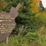 Cascade River State Park Trail - Fall