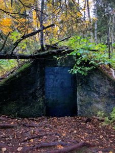 Sugarloaf Cove Trail Root Cellar