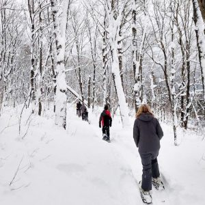 snowshoe hiking at oberg mountain
