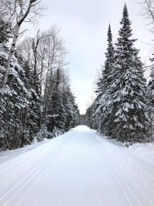 sugarbush trails - guided cross-country trip at bluefin bay