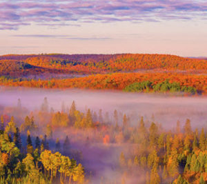 Fall Colors near Bluefin Bay Family of Resorts